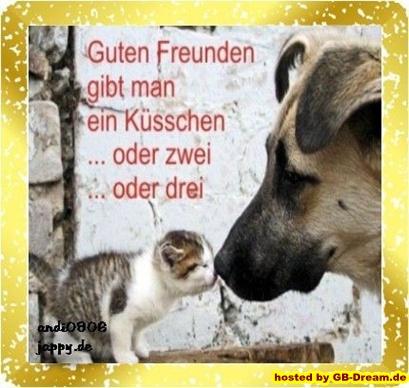 Freundschaft Pinnwand Bilder,GB Pics,GB Eintrag Freundschaft ...