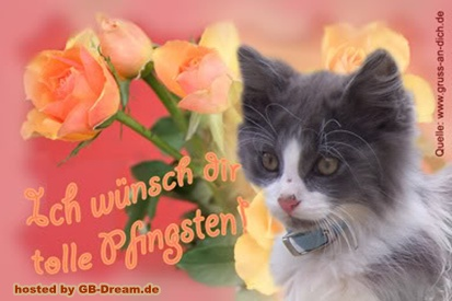 Pfingsten Pinnwand Bilder Gb Pics Schone Pfingsten Gbbild Facebook