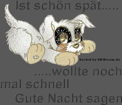 Gute Nacht GBPic