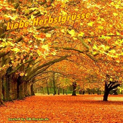 Bilder herbst kostenlos whatsapp Herbstbilder Für