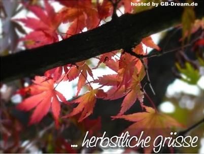 Herbst GB-Pic
